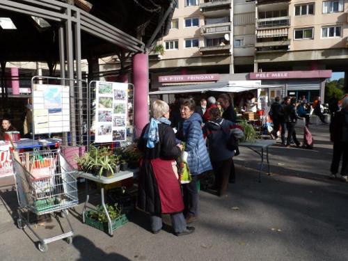 mdd2015-poucets-marche