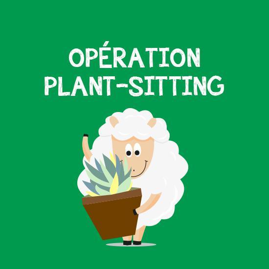 plantsitting